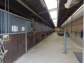 Reitstall Goergen - Der Stall