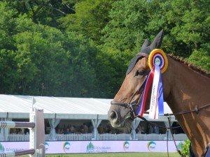 Das Siegerpferd im Grand Prix de Roeser 2015 Stella Lyght (Foto ChB)