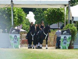 Roeser 2015 Black Pearls
