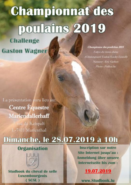flyer championnat des poulains 2019
