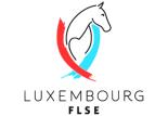 FLSE-Button